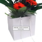 190mm White Florist Paper Carrier Bags