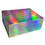 Holographic Magnetic Boxes