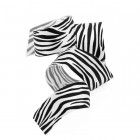 Zebra Print Ribbon
