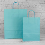 Turquoise Paper Carrier Bags