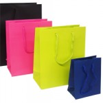 Boutique Paper Carrier Bags