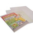 Large Poly Propylene Card Bags