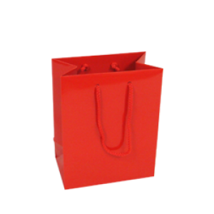 Small Red Gloss Paper Carrier Bags